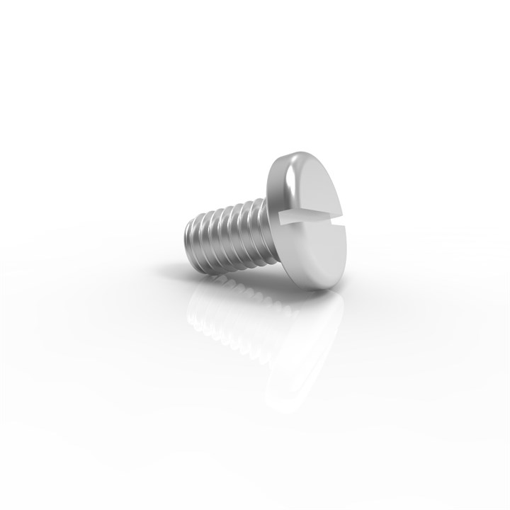 M6-12 SLP A4 x 50 | M6 x 12 Slotted Panhead Screw